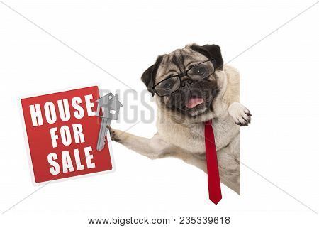 Happy Business Pug Dog Witg Glasses And Tie, Holding Up Red House For Sale Sign And Key, Isolated On