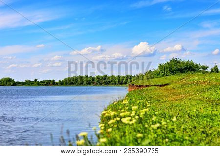 Green Spring River Or Lake Coast Near Forest. Summer Landscape Sun Light And Yellow Flowers Against