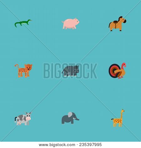 Set Of Alive Icons Flat Style Symbols With Horse, Leopard, Elephant And Other Icons For Your Web Mob