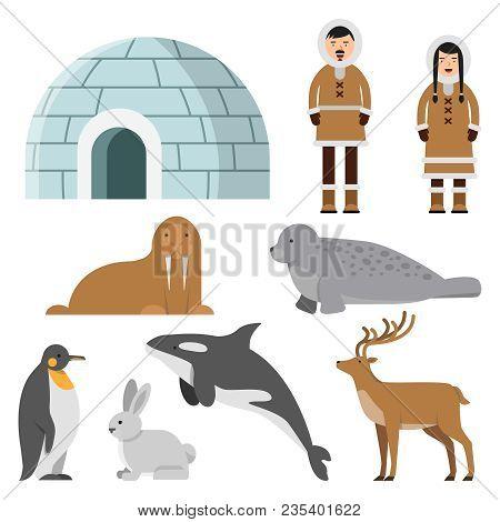 Polar, Arctic Animals And Residents Of The North Near Eskimo Ice House. Igloo House, Penguin And Sib