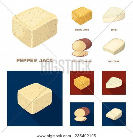 Brynza, Smoked, Colby Jack, Pepper Jack.different Types Of Cheese Set Collection Icons In Cartoon, F