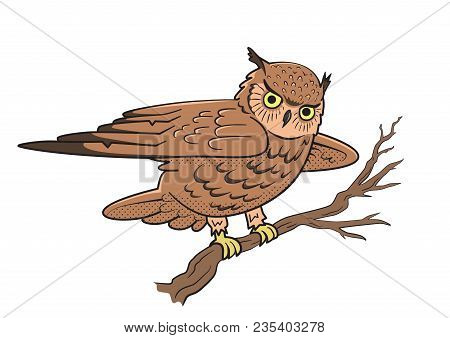Owl Sitting On A Tree Branch. Symbol Of Wisdom. Vector Illustration, Isolated On White Background.
