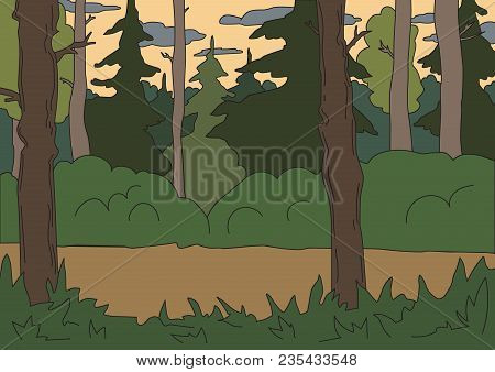 Coniferous Forest, Backdrop. Vector Horizontal Background Illustration