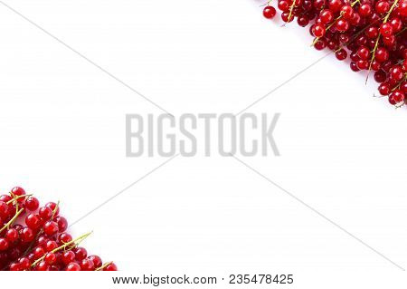 Red Berries. Top View.  Red Currants At Border Of Image With Copy Space For Text. Ripe Red Currants