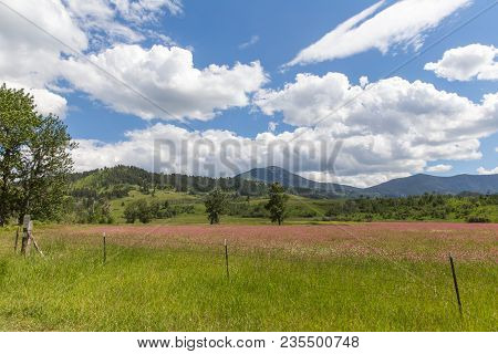 Beautiful Countryside With Barbed Wire Fence, Grass, Flowers, Trees, Mountains, And Cloudy Blue Sky.