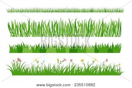 Set Of Different Blades And Stems For Grasses And Lawns. Vector Image