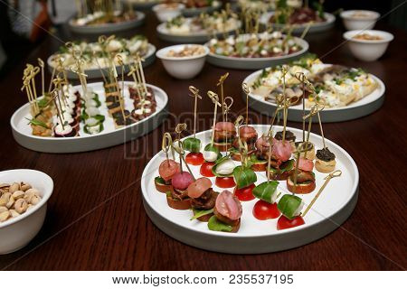 Canape. Different Food Snacks And Appetizers In Round Plates On Corporate Event Party. Celebration W