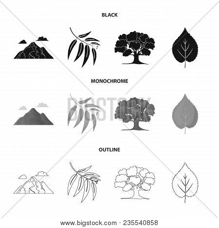 Mountain, Cloud, Tree, Branch, Leaf.forest Set Collection Icons In Black, Monochrome, Outline Style
