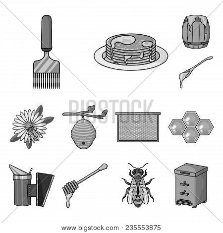 Apiary And Beekeeping Monochrome Icons In Set Collection For Design.equipment And Production Of Hone