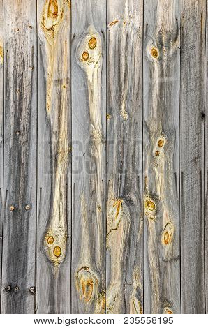 Knot Holes With Expressive Eyes On An Old Barn Wall