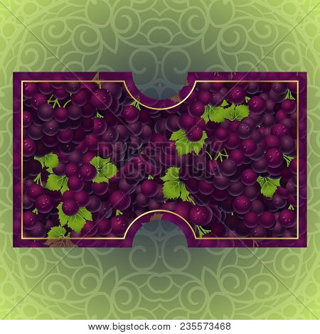 Bunches Of The Red And Purple Grapes With Dew Drops. Vector Banner With Fresh Grapes