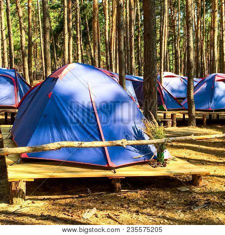 Blue Tents Of Scouts Or Tourists In The Forest On Wooden Platforms. In A Bright Sunny Day. Square. C