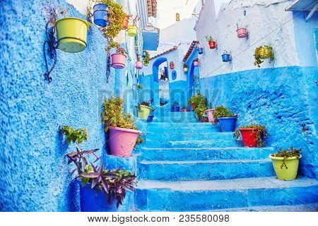 Morocco Is The Blue City Of Chefchaouen, Endless Streets Painted In Blue Color. Lots Of Flowers And
