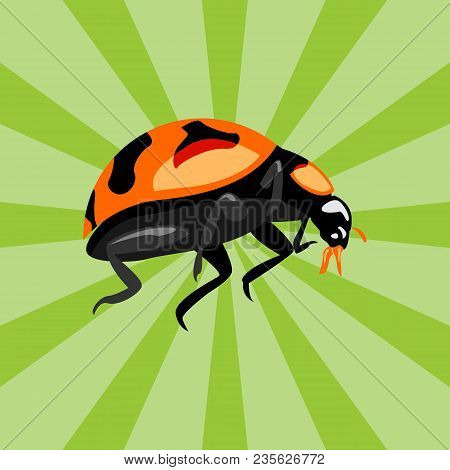 Animal Beetle Insect Illustration.animal Beetle Insect Icon Modern Symbol For Graphic And Web Design
