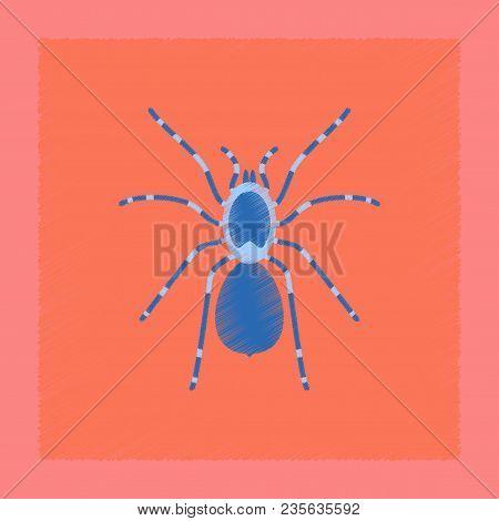 Flat Shading Style Illustration Of Spider Tarantula