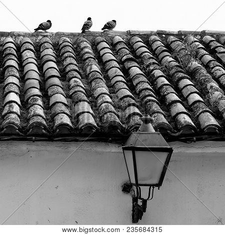 Tile Roof Of Old House In Chinchon, Madrid, Spain