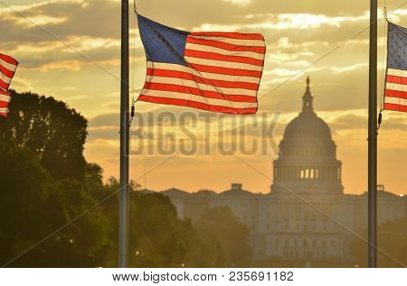 United States Capitol dome silhouette and the national flags of U.S.  rounding Washington Monument during a misty sunrise - Washington D.C. United States of America