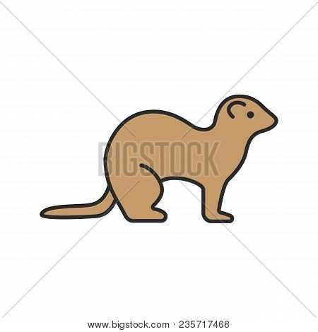 Ferret Color Icon. Polecat. Isolated Vector Illustration