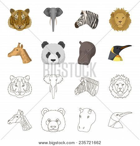 Panda, Giraffe, Hippopotamus, Penguin, Realistic Animals Set Collection Icons In Cartoon, Outline St