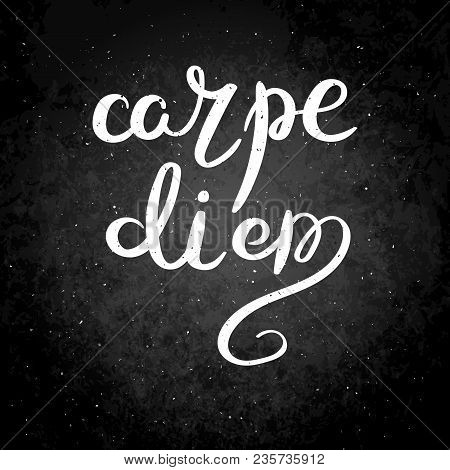 Carpe Diem. Hand Drawn Vector Lettering Phrase. Modern Motivating Calligraphy Decor For Wall, Poster