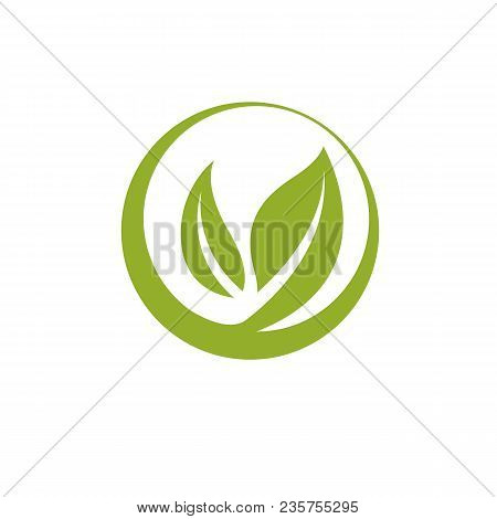 Vector Graphic Illustration Of Green Leaves. Vegan Conceptual Abstract Logotype For Use In Holistic