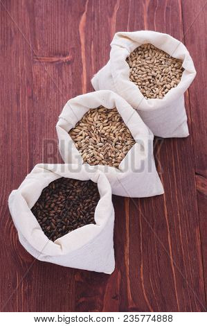 Grinded grains of barley malt close-up. Craft beer brewing from grain barley pale malt in process. Ale or lager from pilsner malt. poster