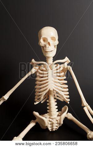 Human Body Skeleton On A Black Background
