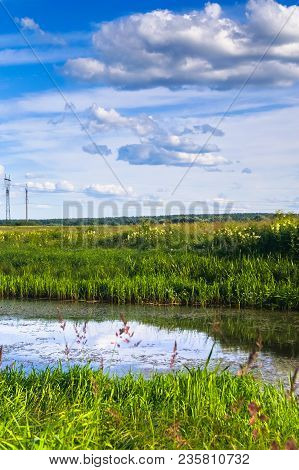 A Small Pond On The Blooming Meadow. Boundless Russian Expanses.