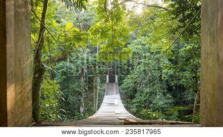 Escape into solitude with hanging jungle bridge scene poster