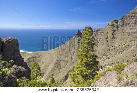 Gran Canaria, March - View From A Hiking Path In Tamadaba Nature Reserve Towards Faneque, The Talles