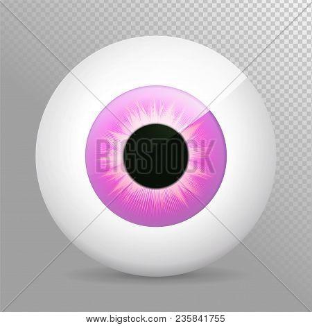 Eye. Realistic 3d Eyeball Vector Illustration. Real Human Iris,pupil And Eye Sphere. Icon On Transpa
