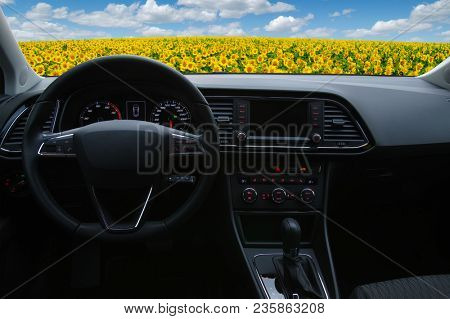 Inside the car view of the landscape