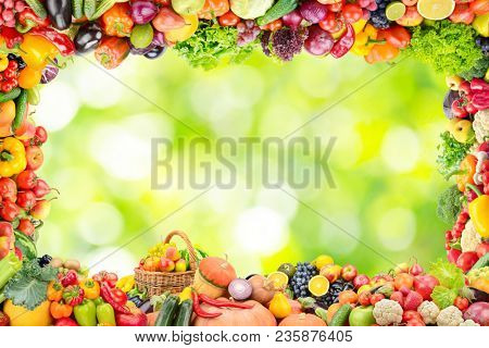 Frame of fruits and vegetables on abstract blurry plant background. Copy space