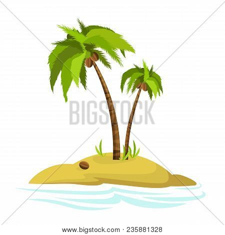 Illustration Of A Palm Tree On An Island. Decorative Palm Tree Isolated On White Background. Vector.