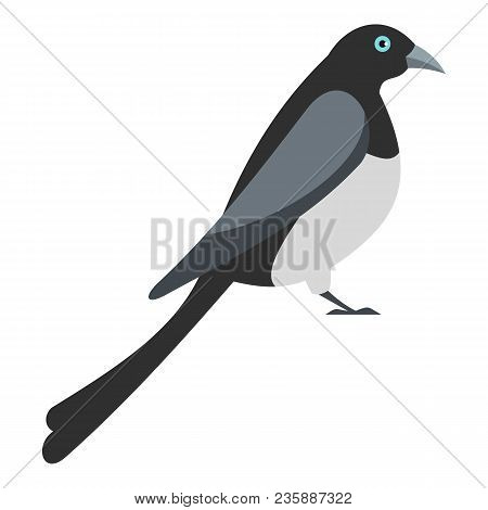 Big Magpie Icon. Flat Illustration Of Big Magpie Vector Icon For Web