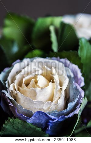Stabilized Rose Is A Beautiful Cream-blue Color. Stabilized Potted Flowers, New Technologies