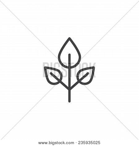Beech Tree Leaves Outline Icon. Linear Style Sign For Mobile Concept And Web Design. Leaf Simple Lin
