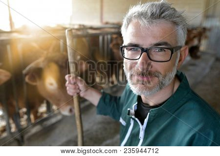 Smiling farmer standing in cow shed