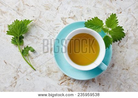 Nettle tea and fresh nettle leaves. A cup of nettle tea with fresh nettles on the table.