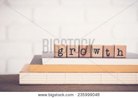The Word Growth Guide, Text On Wooden Cubes On Top Of Books. Background Copy Space, Vintage Minimal