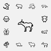Set of 12 editable zoology icons line style. Includes symbols such as tiger, predator, ferret and more. Can be used for web, mobile, UI and infographic design. poster