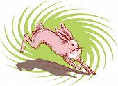 illustration vector for a jumping rabbit with a twirl background poster