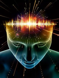 Evolving Consciousness