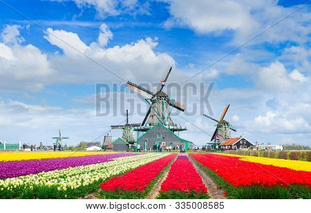 Traditional Dutch Spring Scenery With Famous Windmill Of Zaanse Schans With Dramatic Sky, Netherland
