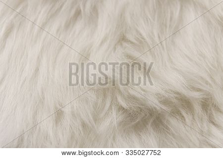 White Artificial Fur Texture For Background Close-up