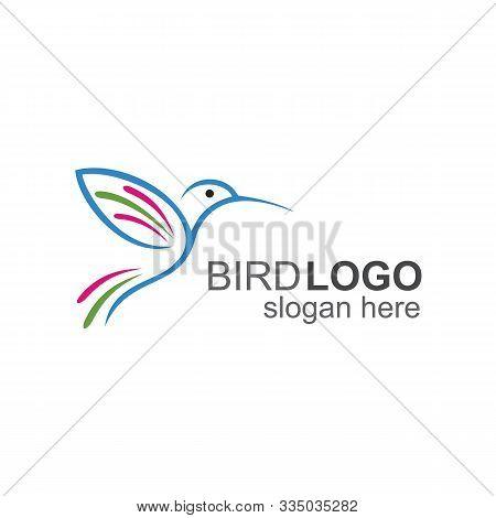 Humming Bird Logo, Flying Bird Icon And Logo