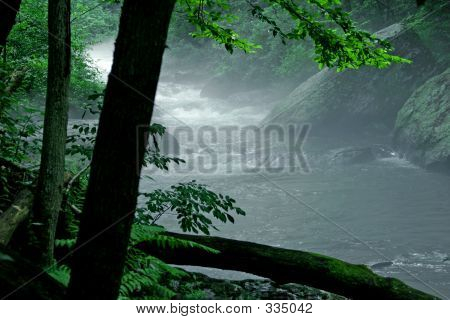 Misty Morning Stream