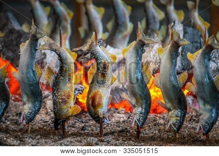 Fish Ayu With Salt Being Charcoal Broiled In Tochigi Japan.