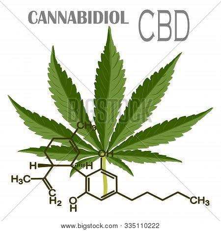 The formula of hemp CBD. Structural model of the molecules of cannabidiol and tetrahydrocannabinol. Medicinal cannabis. Medical marijuana, cannabinoids and health. Vector