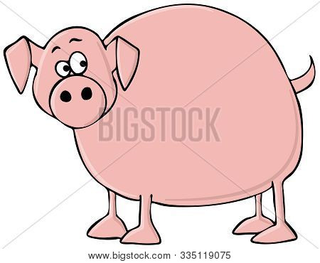 Illustration Of A Fat Pink Pig With A Scared Expression.